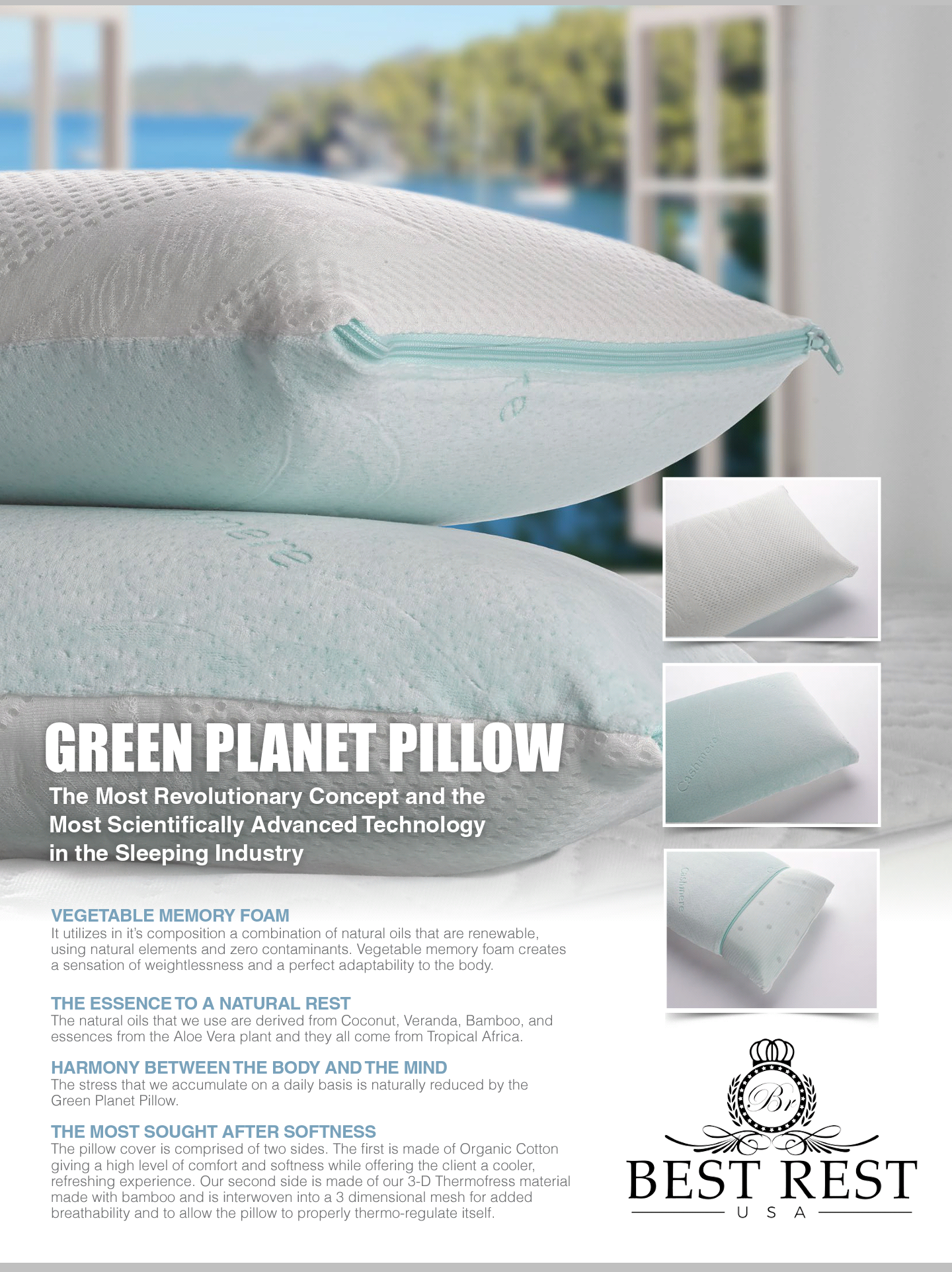 Green Planet Pillow