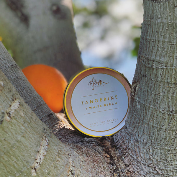Tangerine + White Birch 3.5 oz Candle