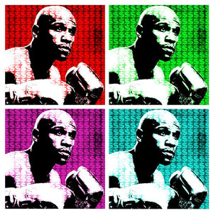 Floyd The Money Mayweather Jr