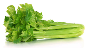 Dehydrated Celery - Case of #10 Cans
