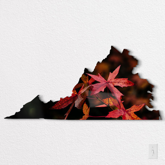 Virginia Shaped Metal Prints