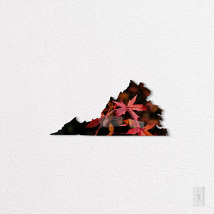 Virginia State Shaped Metal Print on White Wall