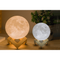 Moon Lamp - 5 Sizes! - Gypsy and the Wolf
