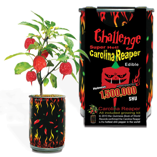 Carolina Reaper Growing Kit Canada