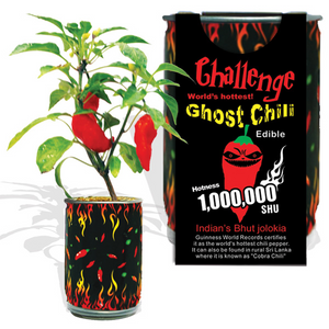 Ghost Chili Pepper Kit Canada, Bhut Jolokia Growing Kit Canada