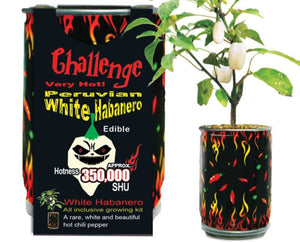 White Habanero Growing Kit Canada