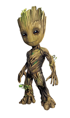 Groot - Closet Full of Wax