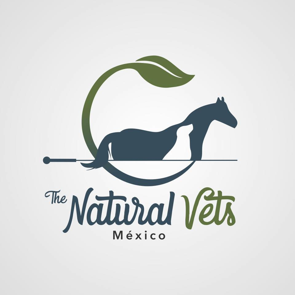 VETERINARIAS A FAVOR DE LA DIETA CRUDA