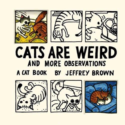 Cats Are Weird And More Observations HC