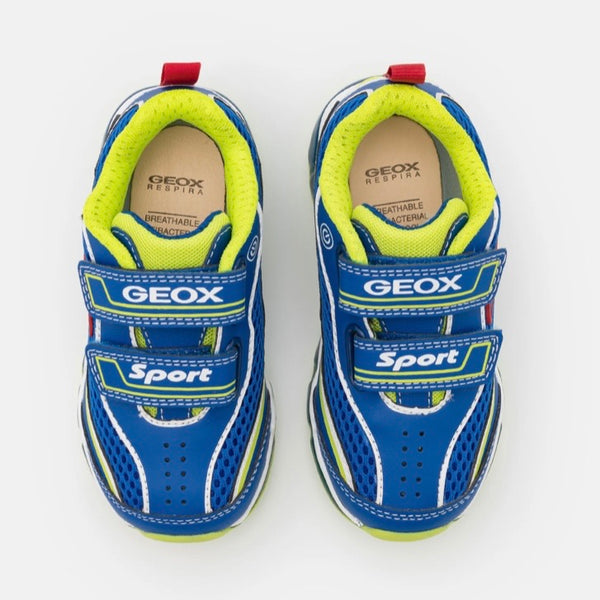 Geox Android Royal/Lime