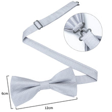Load image into Gallery viewer, Men's Ties & Handkerchiefs Silver Maze Men's Bow Tie Set - Suit Monkey UK