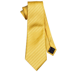 AN-5091 UNAVAILABLE Sunshine Men's Necktie Set Barry.Wang Official Store