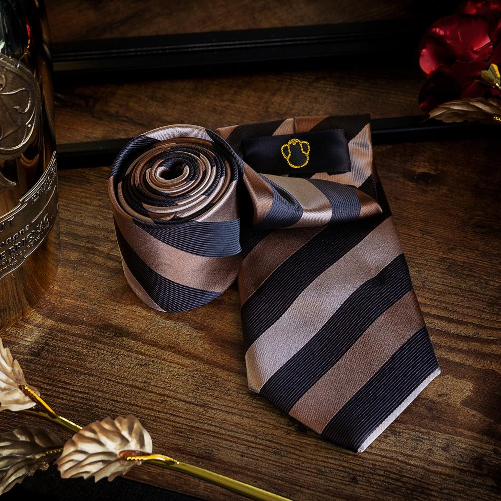 Earth Colours Men's Necktie Set Fashion Accessories Free Shipping!