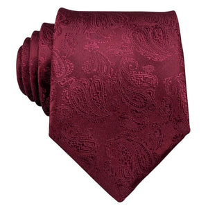 Red Paisley Men's Necktie Set Fashion Accessories Barry.Wang VIP Store