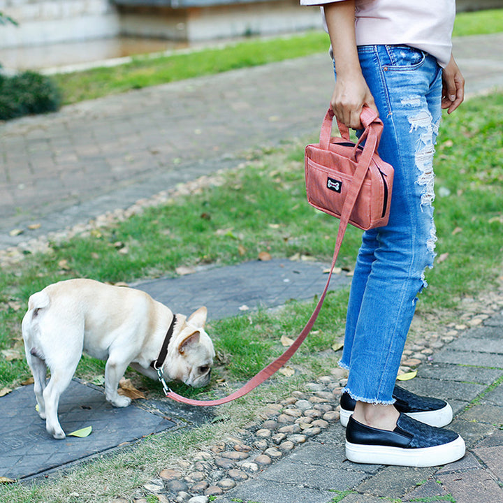 Qbleev dog leash and food handbag pink