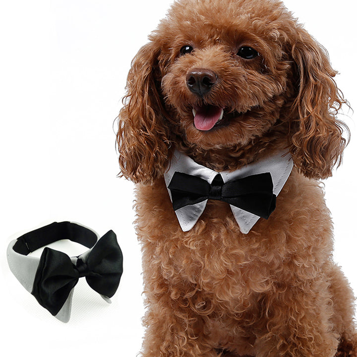 Qbleev satin bowtie dog collar adjustable