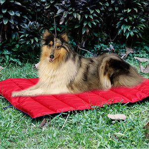 red side of two-tone dog mat reversible QBLEEV