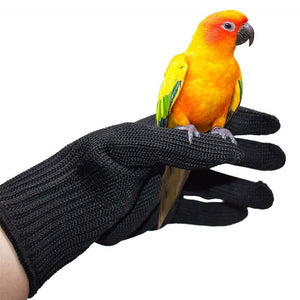 QBLEEV- Bird Anti-bite Chewing Protective Gloves