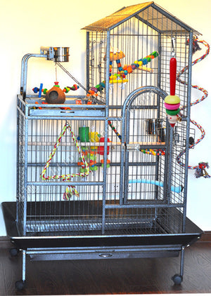 bird toys show in the cage