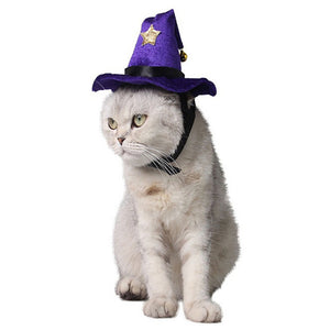 Cute Cats Hat Pet Halloween Magic Hat Party Cosplay Clothes