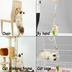 Cat Toys 2 PCS and Kitten Cat Toys Set