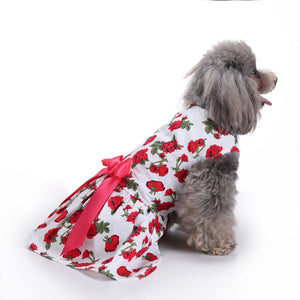 Floral Dog Dress QBLEEV