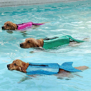 dogs wearing Dog Life Jackets Mermaid with Reflective Stripes & adjustable Belt in the water
