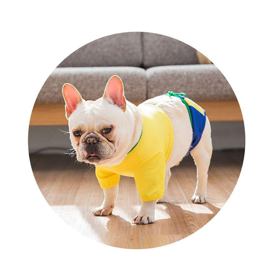 Cute Bikini Dog Dress yellow QBLEEV weard by a dog