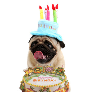 Dog Cat Birthday Hat With Cake and 5 Colorful Candles Design
