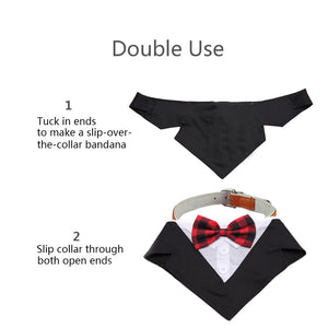 dog tuxedo double used as dog bandana and dog collar