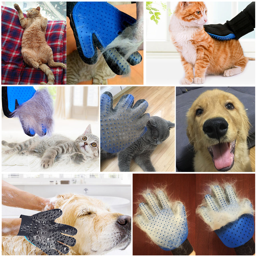 grooming $ deshedding hair of dogs and cats with dog grooming gloves