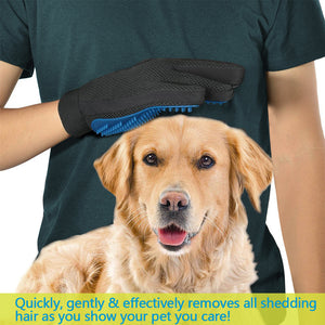 Quickly, gently and effextively removing shedding dog hair with dog grooming glove