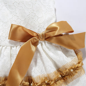 Sweetie Ribbon Dog Dress Golden Ribbon QBLEEV