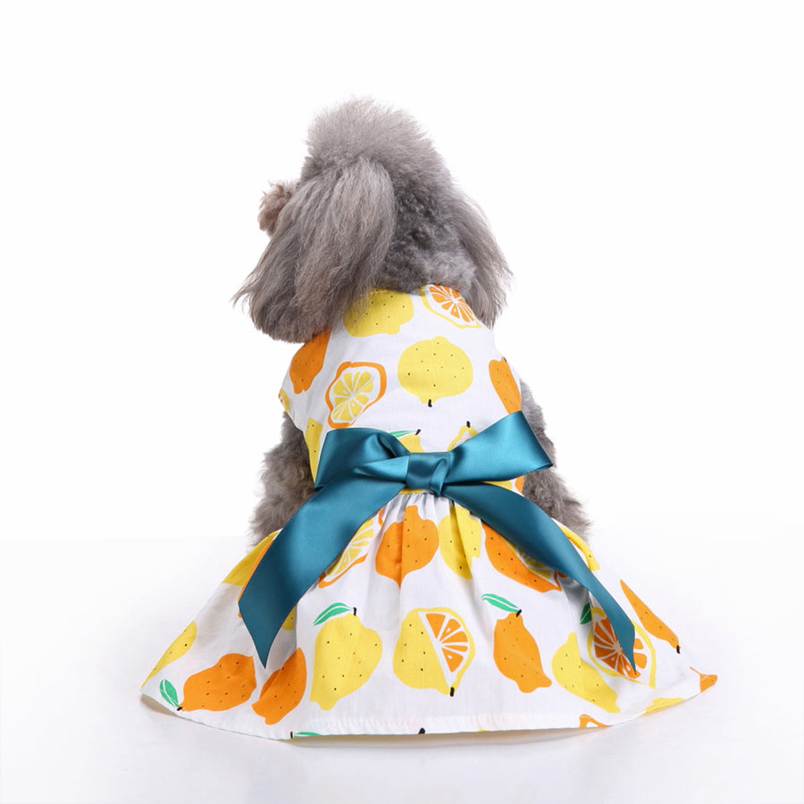 back of Floral Dog Dress Lemon Printed QBLEEV