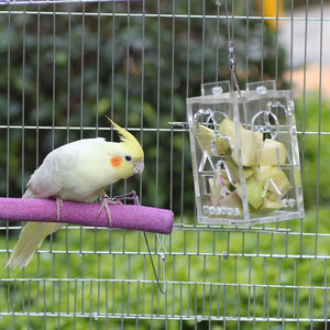 Parrot Foraging Toy