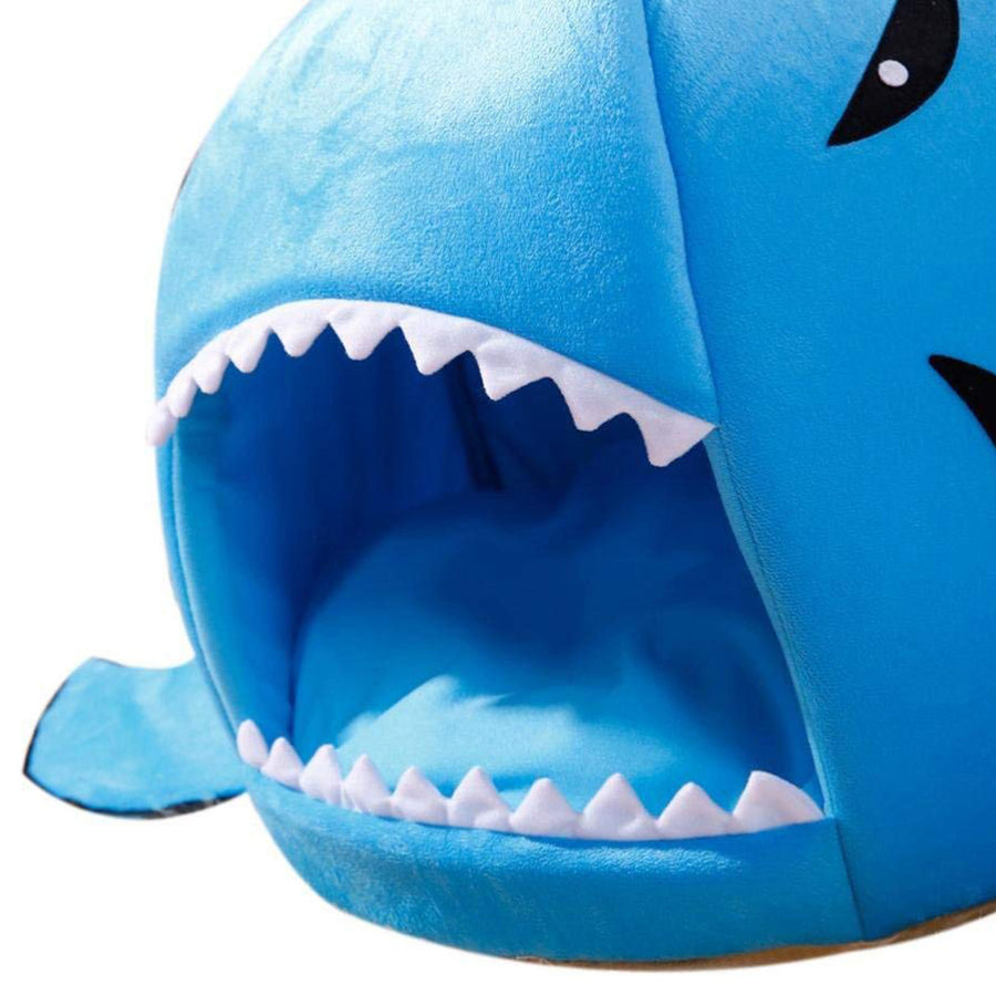 Shark Design Pet bed -50% off & Free shipping