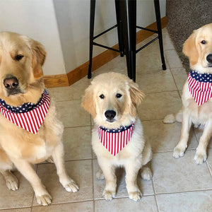 three dogs in small, medium and large sizes wearing Qbleev American Flag Dog Bandana Triangle