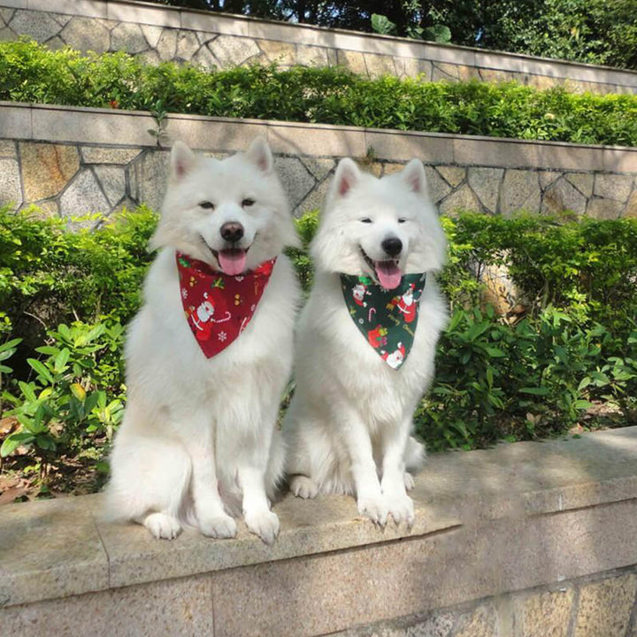 two dogs wearing Qbleev dog bandana christmas santa claus red & green