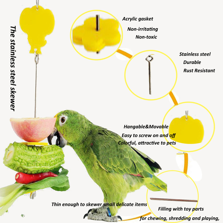 Bird Foraging Toys introduction