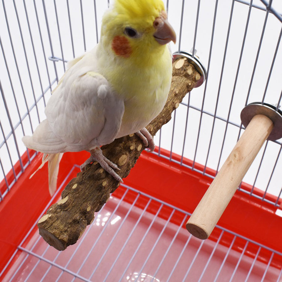 Birds Cage Accessories Decoration