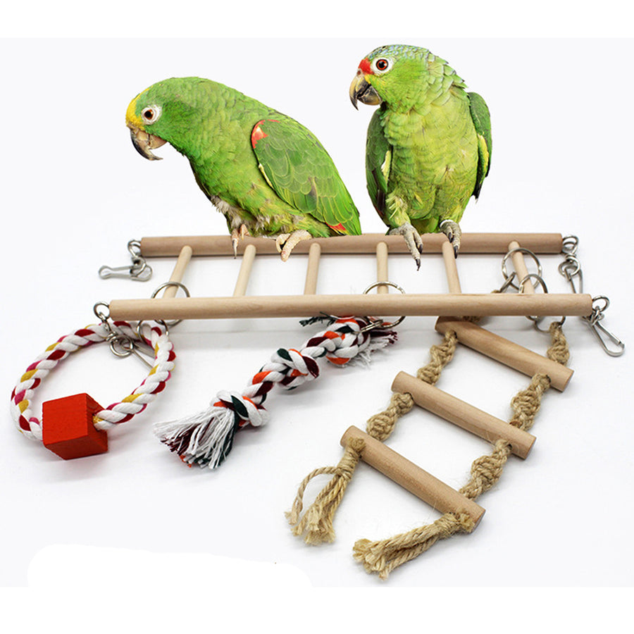 TWO BIRDS STAND ON A TOY LADDER