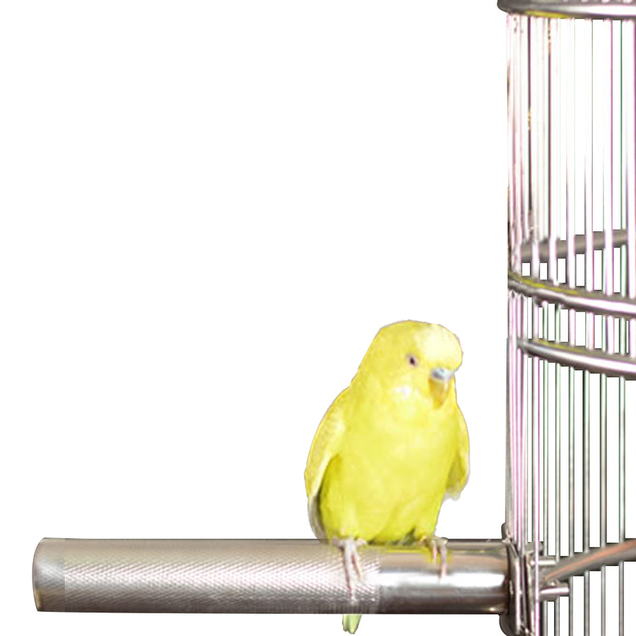 Bird Cage Perch Stand