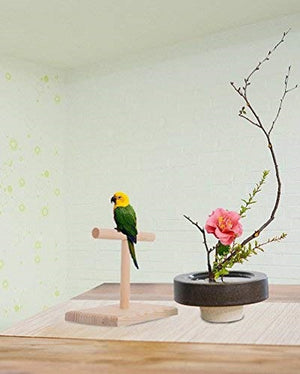 Bird Cage Stand Parrot Perch Training Stands Playstand Playgound-QBLEEV
