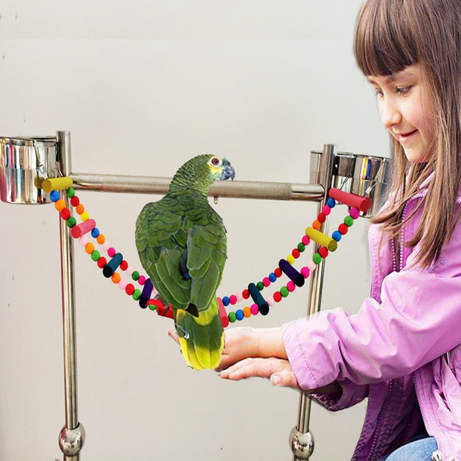 A GIRL PLAY WITH THE PARROT WHO STANDS ON TOY LADDER