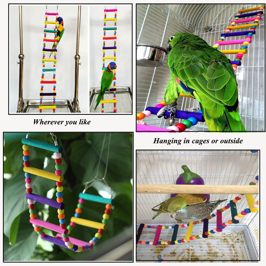 BIRD TOY LADDER BUYER SHOW
