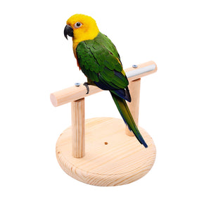 Parrot Perch Stand