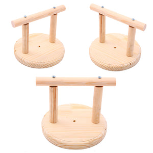 Parrot Perch Wooden Stand