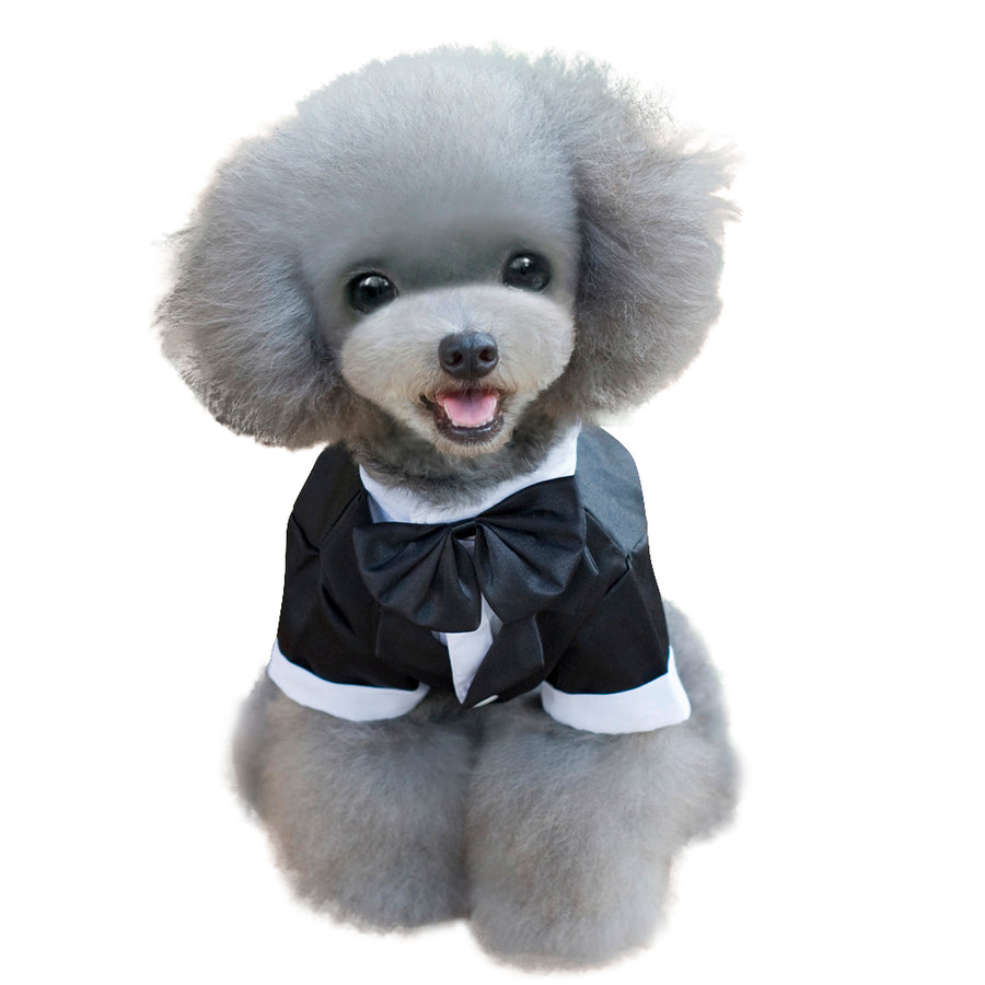 Dog Clothes, Puppy Dovetail , Dog Suite With Bow-tie, Black