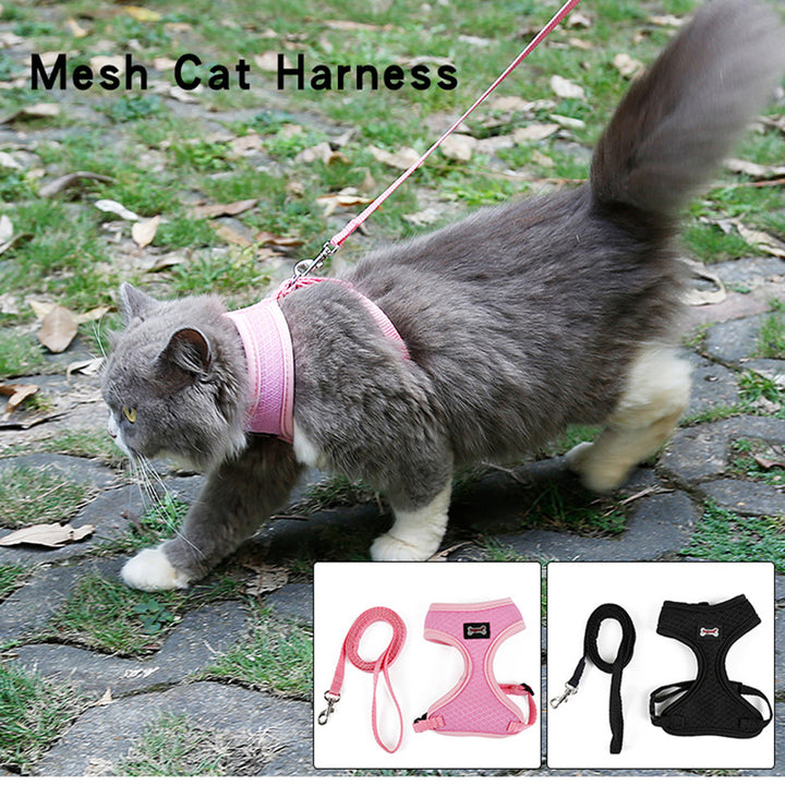 Mesh Cat Harness