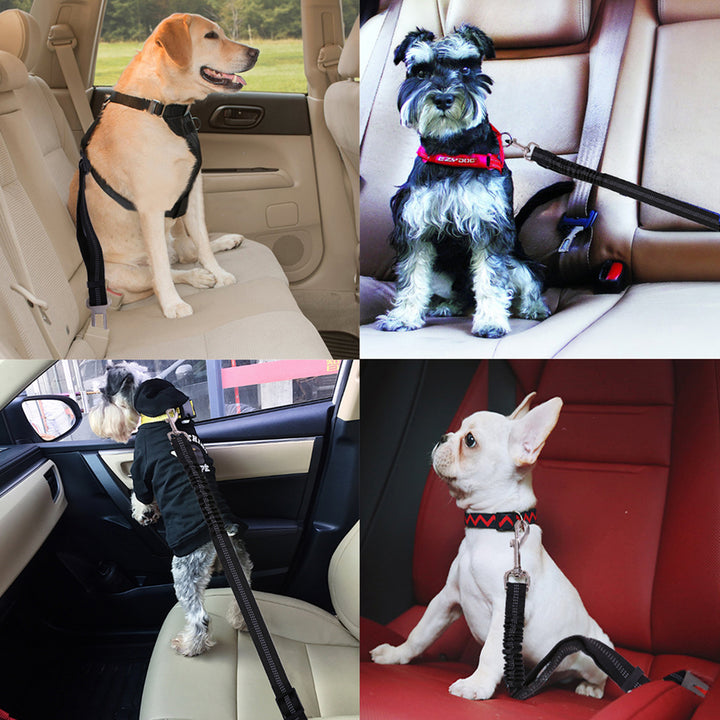 Qbleev elastic dog seat belt linking dogs to seats in cars